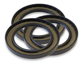 Image_pt_Bearings&Seals_Seals_TH_1